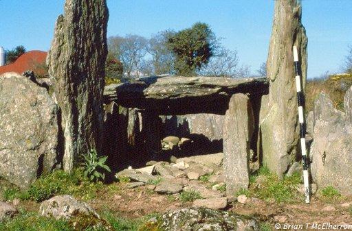 Island Wedge Grave